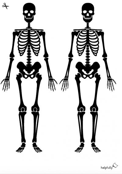 skelett zum ausschneiden  vorlagen zum ausmalen gratis